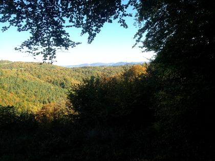 Noch ein Blick schräg übers Tal