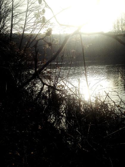 Der Netzbachweiher in mystischem Spätherbstlicht