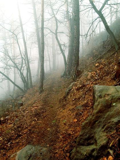 Wabernde Nebel, noch immer