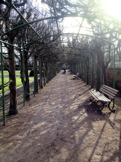 Ich spaziere durch einen barocken, Lustgarten und dabei dröhnt mir Karnevalsmusik in den Ohren, auch nicht schlecht