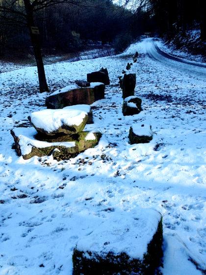 Letzte Wintertage