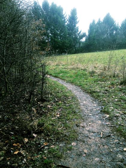 Der Pfad verläuft abwechselnd durch Wald und über Wiesen