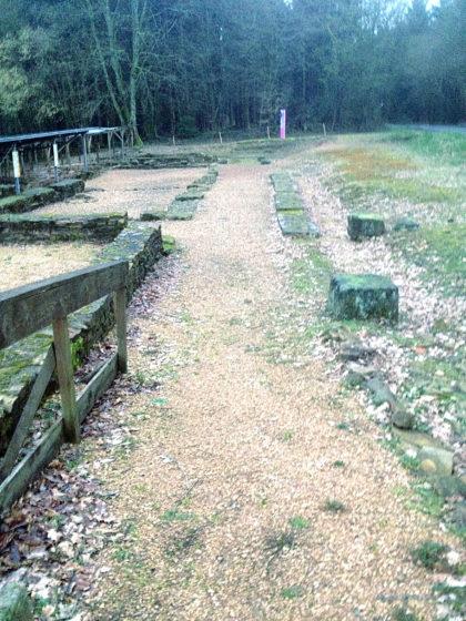 Die Wareswald-Ausgrabungsstätte