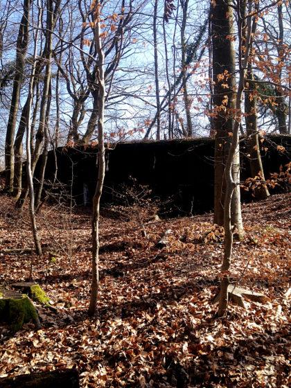 Bunkeranlagen, Teile des Westwalls im 2. Weltkrieg
