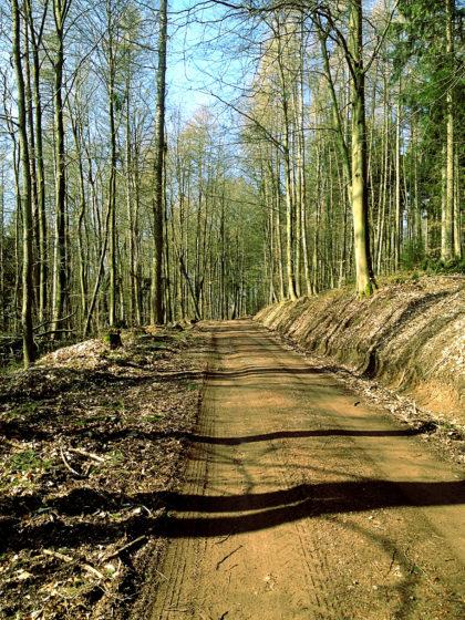 Die Wanderung führt mich durchs sog. Biosphärenreservat Bliesgau