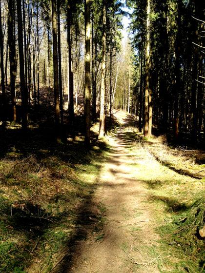 Auf dem Weg zum Wolfsfelsen