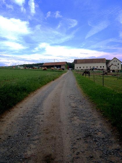 Vorbei an einem einsamen Gehöft, nicht mehr sehr weit entfernt von der Abzweigung nach Kleinwallstadt