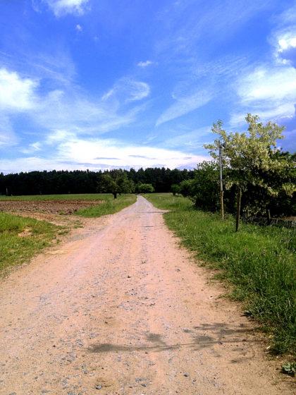 Der Wanderer, der Weg, der weite Himmel