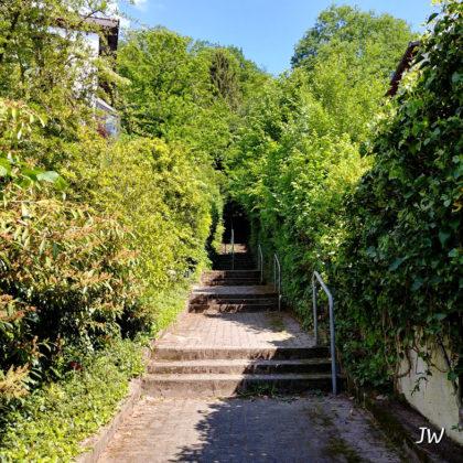 Aus einem Wohngebiet biegen wir auf diese Treppe ab und sind wenig später im Wald