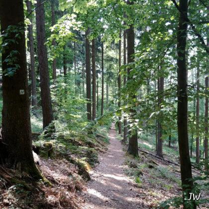Noch ca. 2 Km bis Neckarsteinach