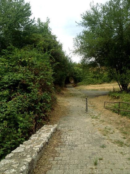 Nach 200 Metern Landstraße beginnen wieder die Hohlwege