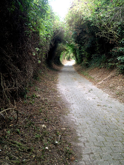 Wie kleine Tunnels
