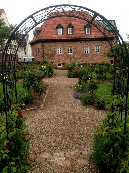 Ein kleiner Rosengarten in Obernburg
