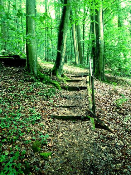 Schöne Wegführung über kleine Stufen