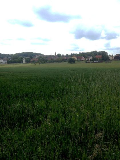 Blick auf das Dorf Streit