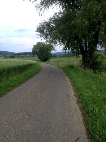 Nur selten driftet der Weg nach links oder rechts
