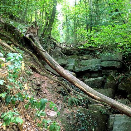 """""""Das weiche Wasser bricht den Stein"""" - in diesem Fall war es der Flursbach, der im Laufe der Zeit diese Schlucht geschaffen hat"""