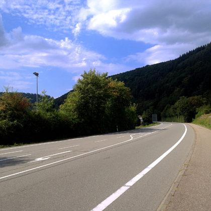 An der Straße zwischen Neckargerach und Zwingenberg
