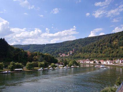 Neckarblick; im Hintergrund die Zwingenburg