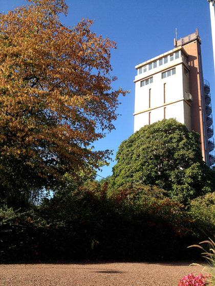 Der Hindenburgturm am Blumengarten Bexbach