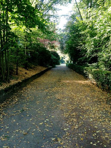 Unverkennbar Herbst, wenn auch noch nicht kalendarisch
