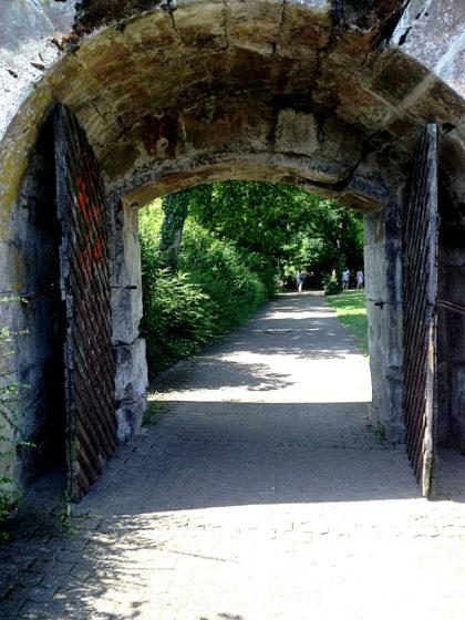 Fußweg am Ufer des Altarms entlang