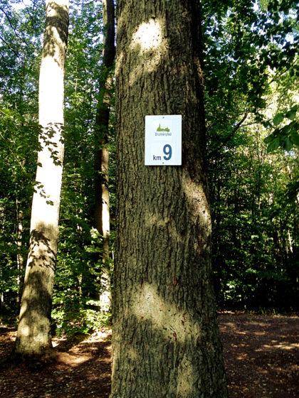 Hinter Oberbexbach stoße ich auf den Brunnenpfad, 1. Premiumweg des Tages