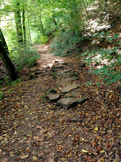 Allmählich müsste ich mich Premiumweg Nummer drei - dem Steinbachpfad - nähern