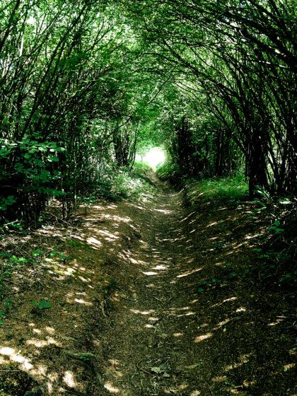 Wie durch einen langen, lichterfüllten Korridor