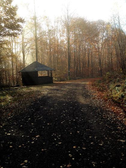 An dieser Hütte biege ich allerdings auf einen sehr schmalen Pfad ein