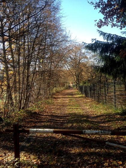 Wieder zurück in Merchweiler