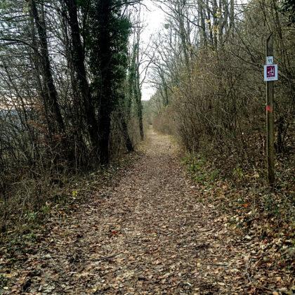 Die letzten vier Kilometer