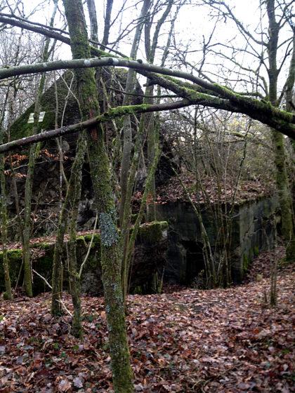Ein alter Bunker, Teil des von den Nazis errichteten Westwalls
