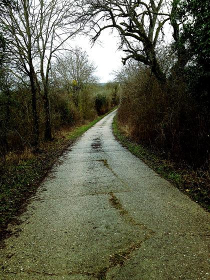 Das ist jetzt einfach nur noch ein Radweg nach Niedaltdorf