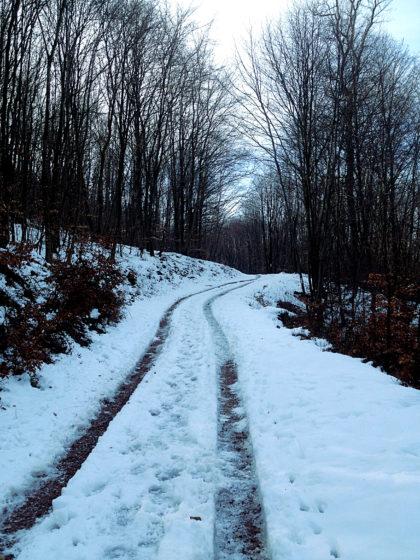 So ziemlich der letzte Wintertag