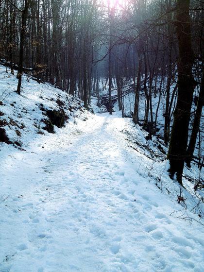 Im tieferen Schnee komme ich gut voran