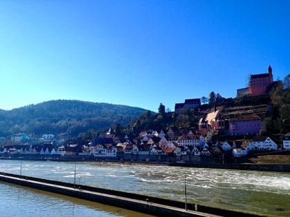 Blick vom jenseitigen Neckarufer auf das Schloss und die Stadt