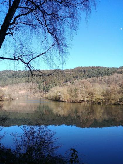 Bis jetzt hat mir jeder Odenwaldabschnitt des Neckars sehr gut gefallen