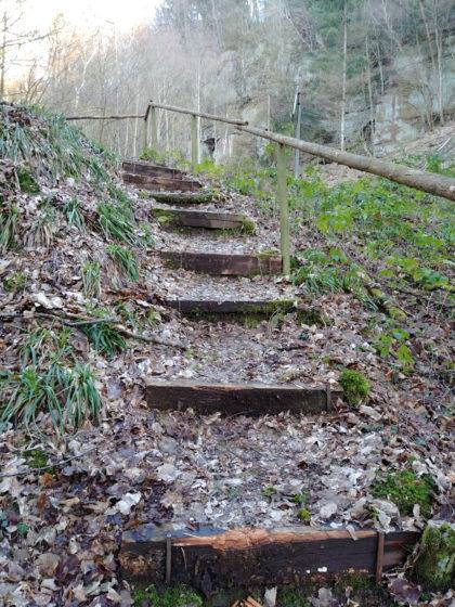 Eine geheimnisvolle Treppe, die zu einem Schießstand mitten im Wald führt