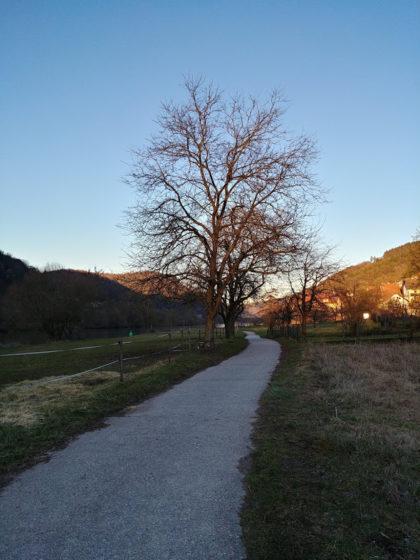 Der Pfad führt unterhalb von Pleutersbach entlang