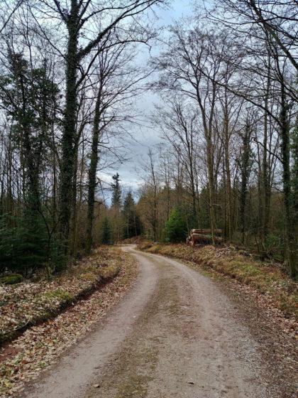 Bis zum Ende jetzt mehr oder weniger ansehnliche Spazierwege