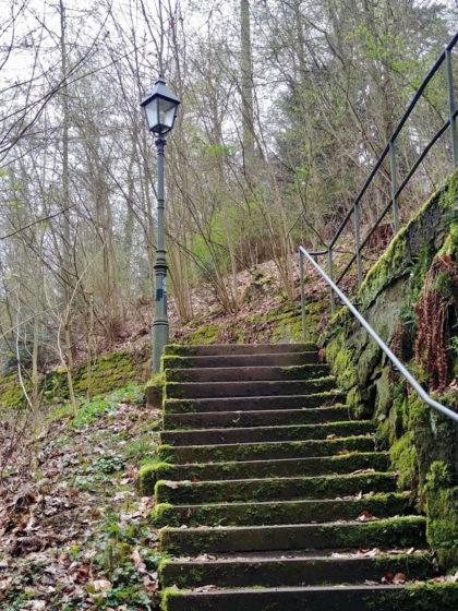 Eine Laterne mitten im Wald