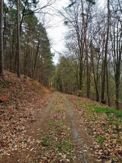 Alles in allem nur 15 Kilometer, aber Entfernungen sagen nichts über die Qualität einer Wanderung aus