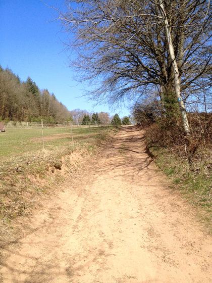 Von den rund 15 Kilometern des Karl-August-Pfades will ich etwa zwei Drittel abwandern
