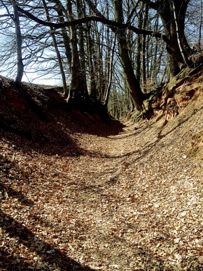 Hohlweg hinter Bechhofen
