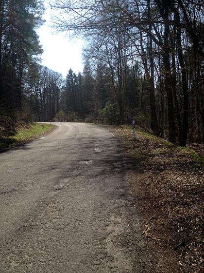 Und wieder eine Landstraße