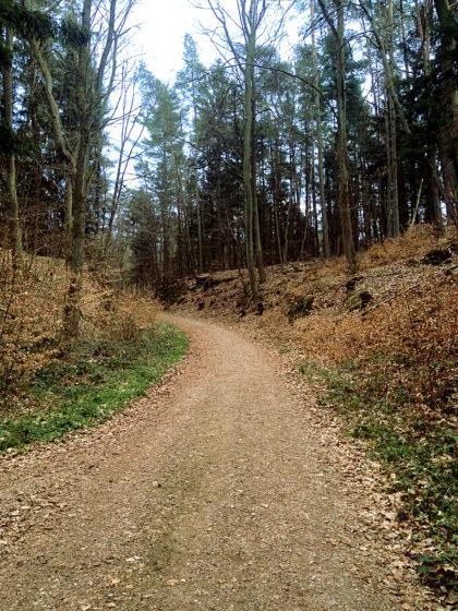 Die letzten paar Kilometer der Schlossberg-Tour haben begonnen