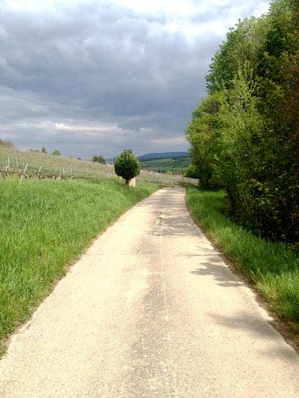 ...ehe ich endgültig nach Sulzfeld am Main abbiege