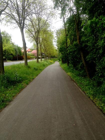 Zwischen Ochsenfurt und Frickenhausen