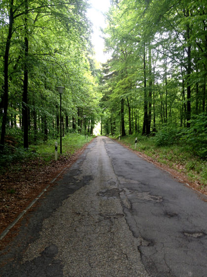 Die Straße zum Kohlhof